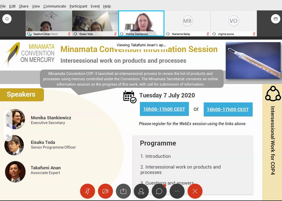 Information session:  Intersessional work on products and processes